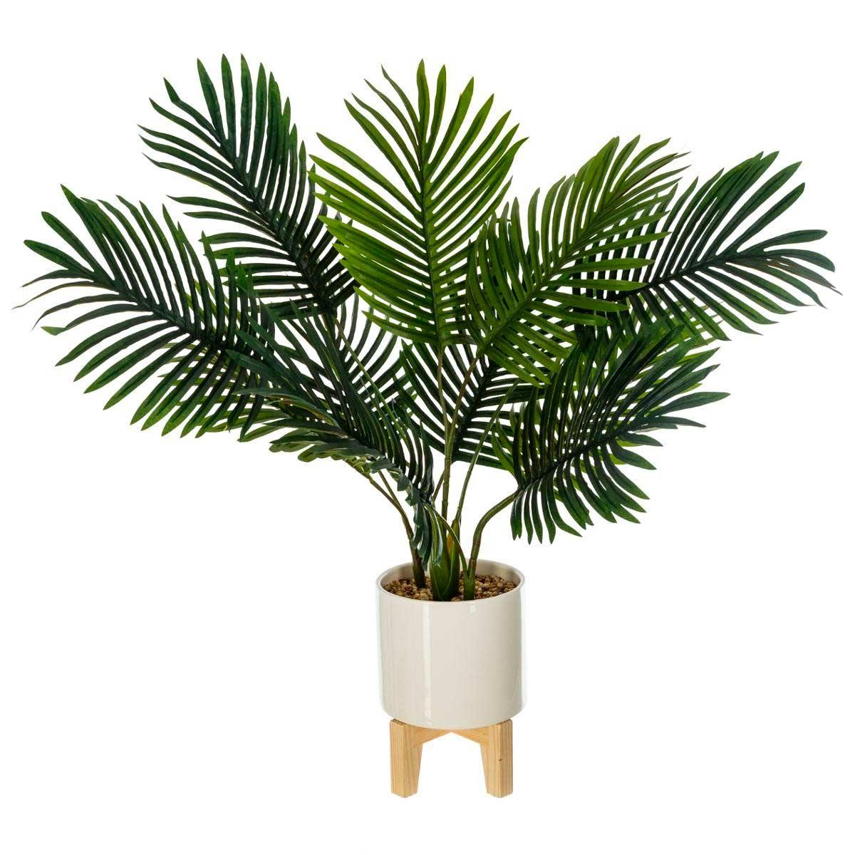 GLOVER PALM TREE POT 72cm